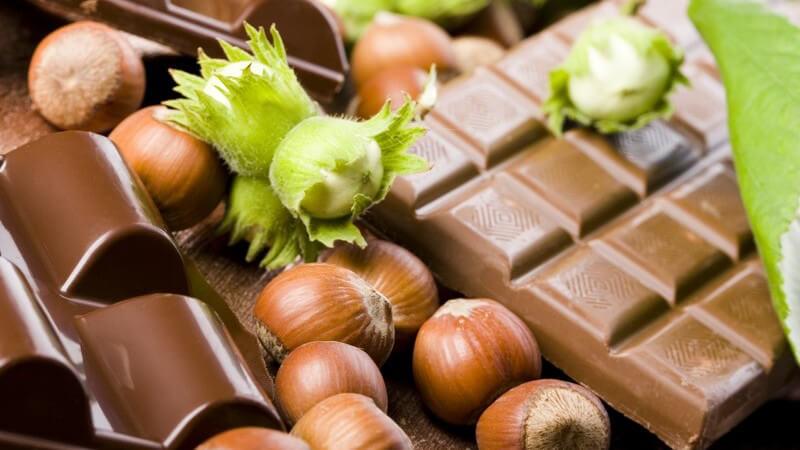 Tafeln Schokolade zwischen ganzen Haselnüssen