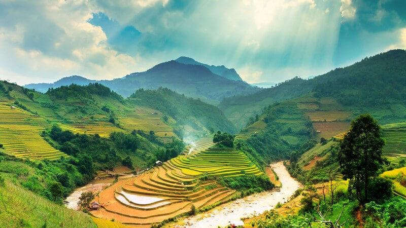 Berglandschaft mit Reisterrassen in Vietnam