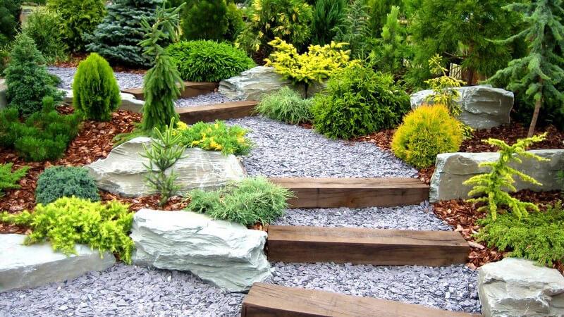 Aufgang oder Treppe mit flachen Stufen in Garten mit weißem Kies und Steinpflanzen und Nadelbäumen