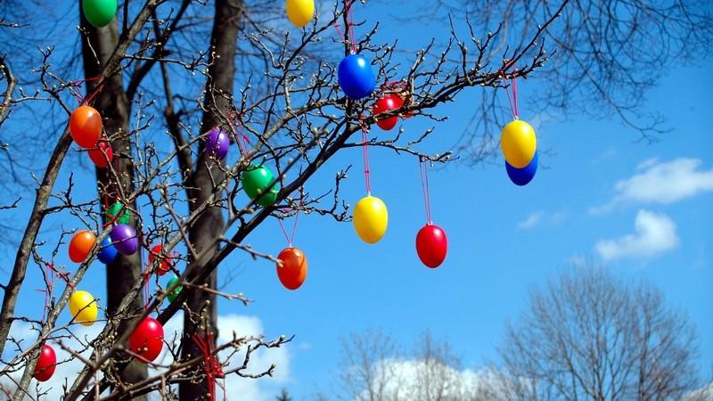 Kahler Baum unter blauem mit bunten Ostereiern dekoriert