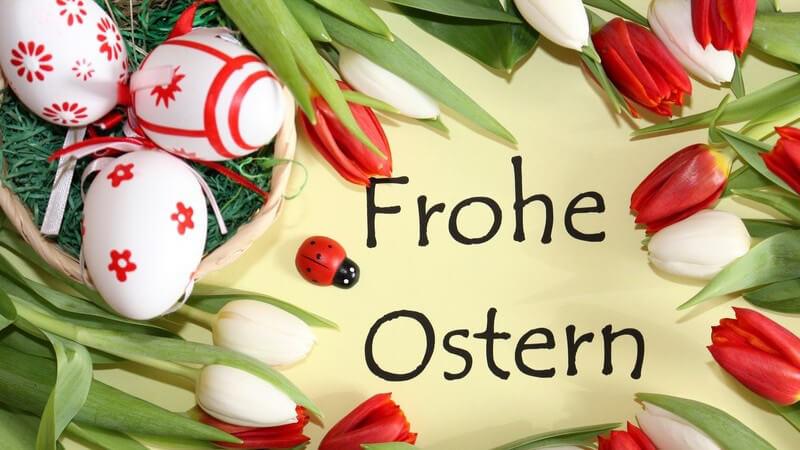 """Aufschrift """"Frohe Ostern"""" umrandet von Ostereiern und Tulpen"""