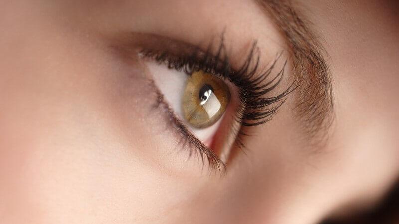 Nahaufnahme rechtes Auge einer Frau, Augenfarbe grün-braun