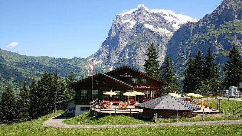 Berghotel vor Tannenwald und Gebirge bei blauem Himmel und grüner Wiese