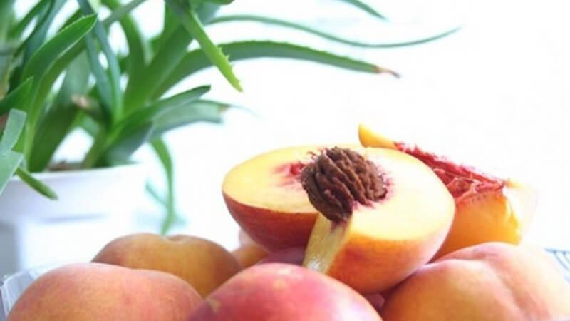 Angeschnittene, halbe und ganze Pfirsiche mit Aloe-Vera-Pflanze im Hintergrund