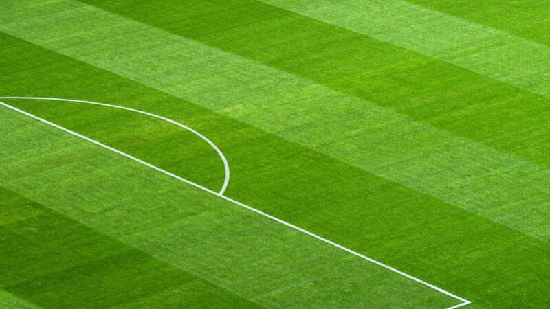 Ausschnitt eines Fußballplatzes