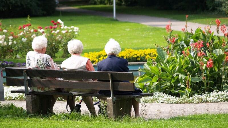 Rückenansicht drei Rentnerinnen mit weißen Haaren auf Parkbank