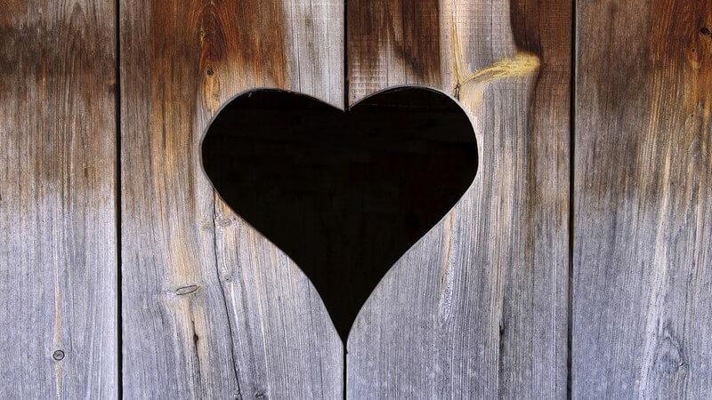 Holztür mit ausgeschnittenem Herz einer Toilette draußen