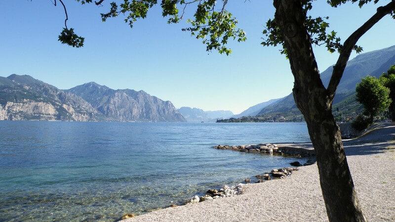 Blick von einem Baum am Ufer aus auf den Gardasee in Italien