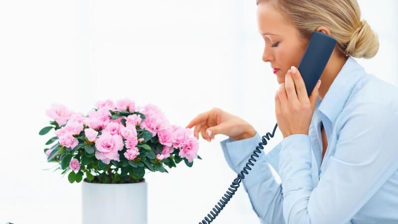 Frau sitzt am Schreibtisch und telefoniert, vor ihr Blumen im Blumentopf