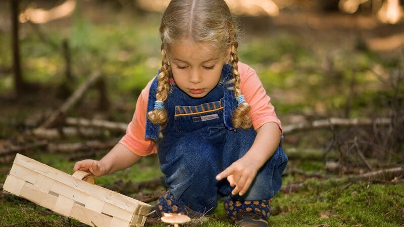 Kleines Mädchen mit Korb im Wald sammelt Pilze