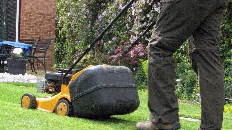 Mann im Garten mäht Rasen mit elektrischem gelben Rasenmäher