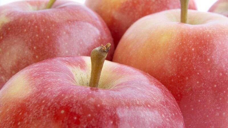 Nahaufnahme Auswahl an roten Äpfeln