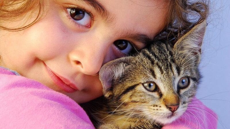 Kleines Mädchen hat kleine Katze im Arm und schaut in Kamera