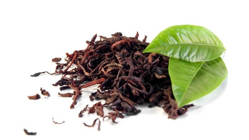 Getrockneter Tee, daneben zwei grüne Blätter auf weißem Hintergrund