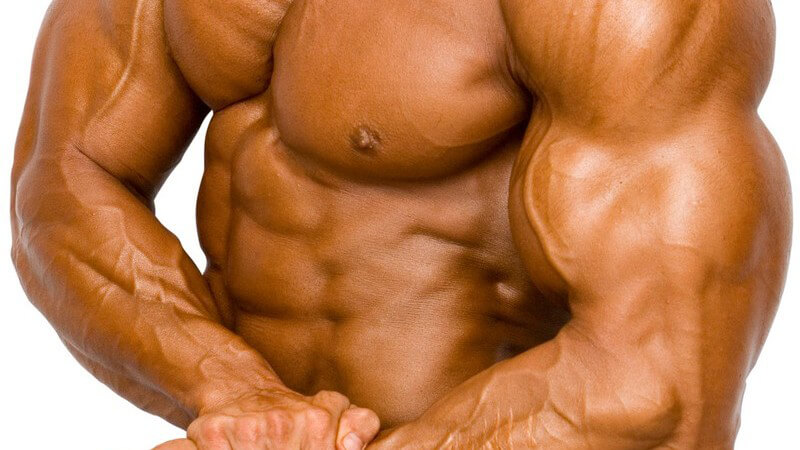 Körper eines Bodybuilders auf weißem Hintergrund