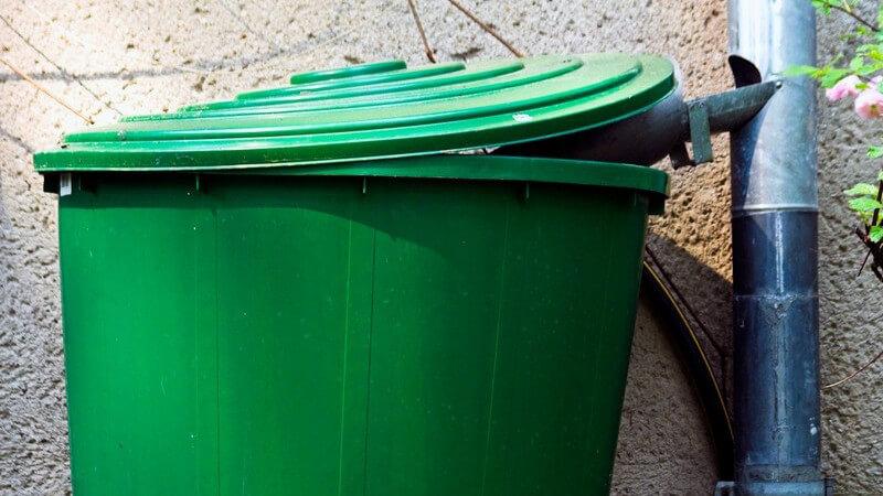 Grüne Regentonne an Hauswand