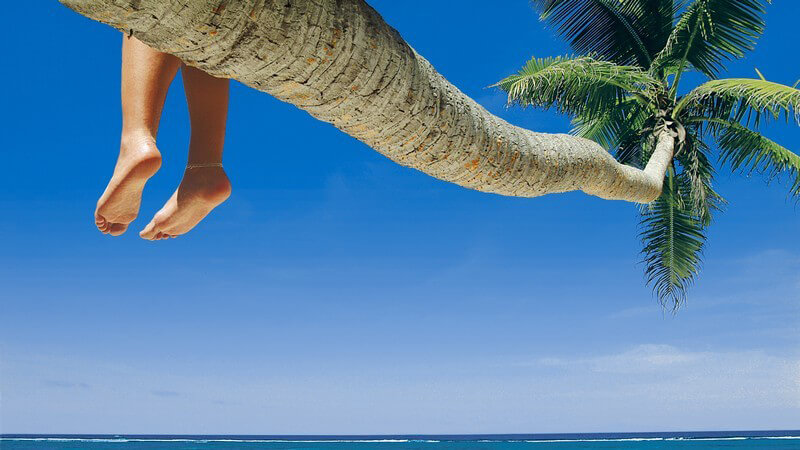 Palme mit baumelnden Füßen über dem Meer vor strahlend blauem Himmel