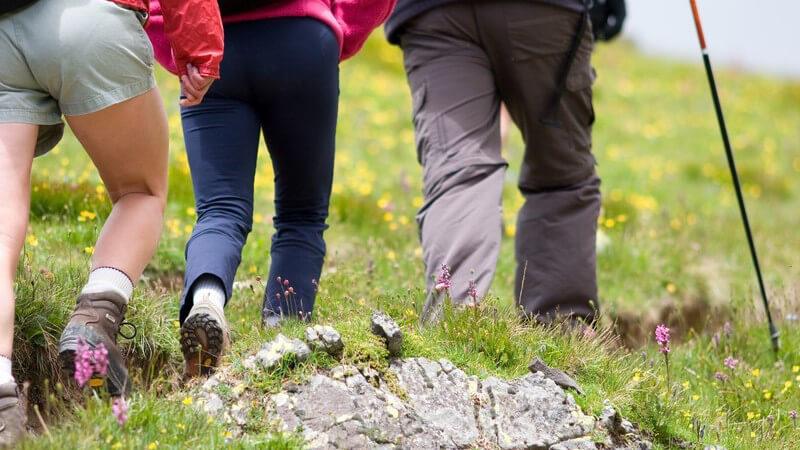 Beine von drei Bergsteigern mit Wanderschuhen, eine steile, steinige Wiese hoch wandernd