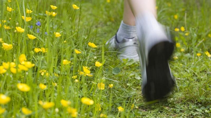 Joggende Beine auf Blumenwiese