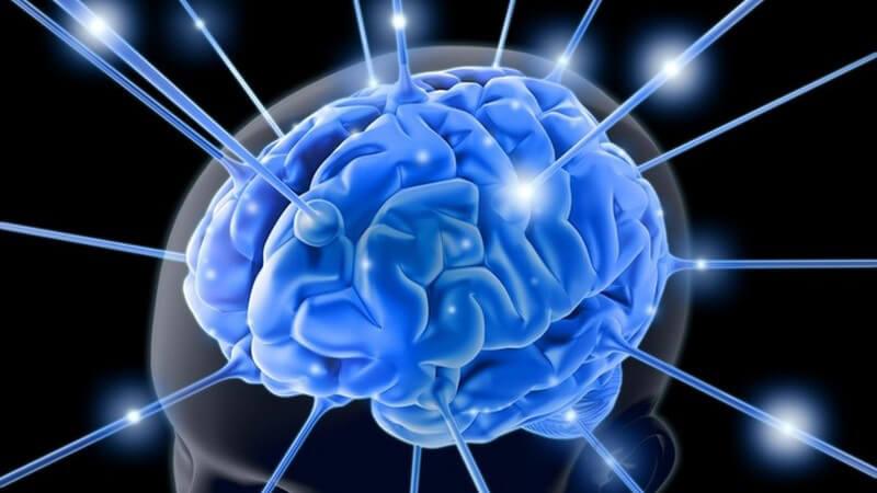 Grafik Gehirn Neurologie in blau