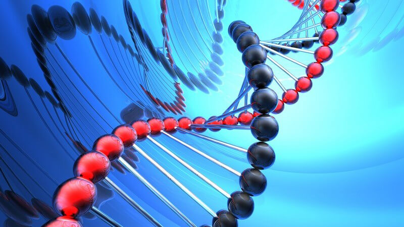 Grafik DNA