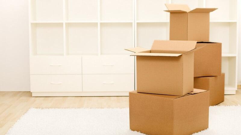 Umzugskartons in leerer Wohnung, dahinter leeres, weißes Regal, Teppich