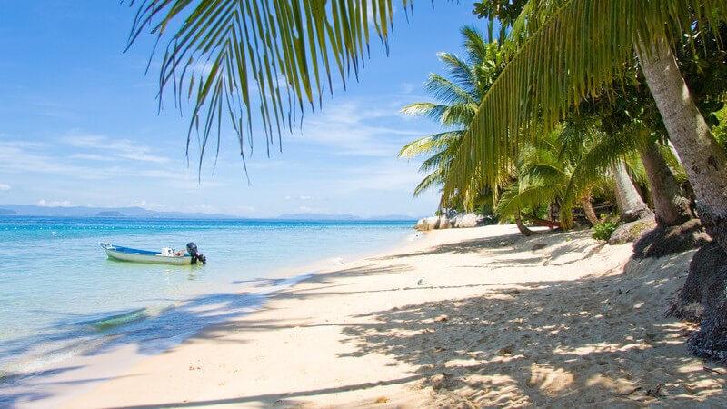Sandstrand mit Palmen, Boot im Meer