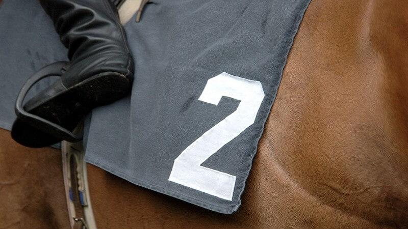Pferderennen, Pferd mit Startnummer 2