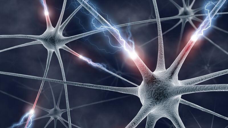 3D Grafik Neuronen, die mit einander verbunden sind und an Verbindungsstellen leuchten