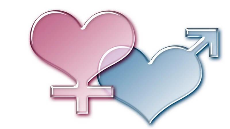 Grafik weibliches und männliches Geschlechtssymbole, rosa, blau in Herzform