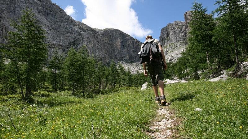 Einzelner Wanderer auf Trampelpfad mit Berg und Baum-Panorama und blauem Himmel