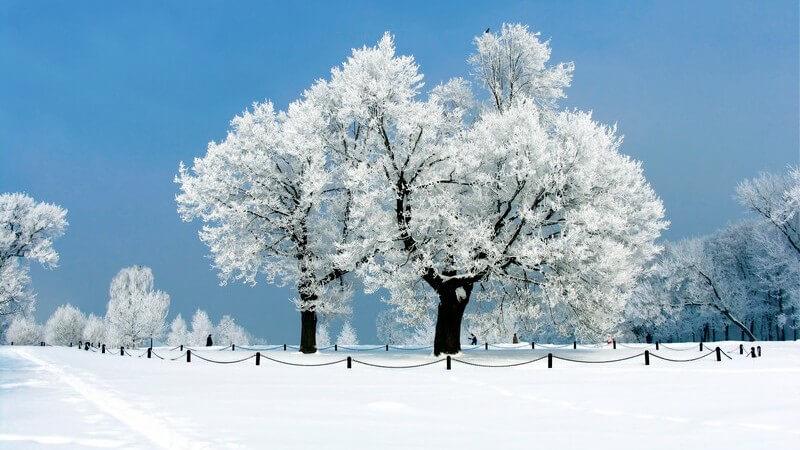 Winterlandschaft unter blauem Himmel