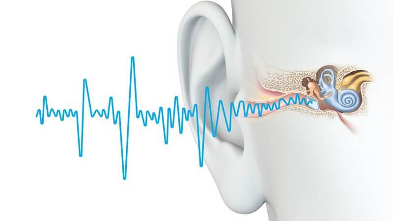 Grafik des menschlichen Gehörs und Hörens, blaue Schallwellen führen ins Ohr