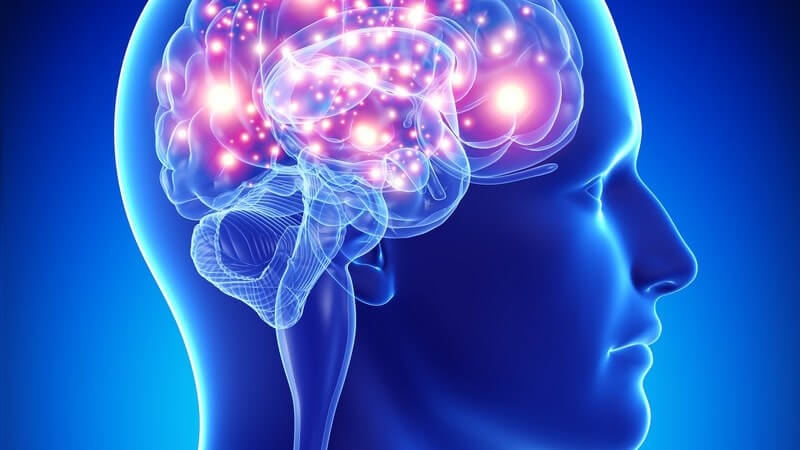 Blaue 3-D-Grafik des Kopfes und Gehirns eines Mannes (Seitenansicht), Gehirnaktivität rot-leuchtend hervorgehoben
