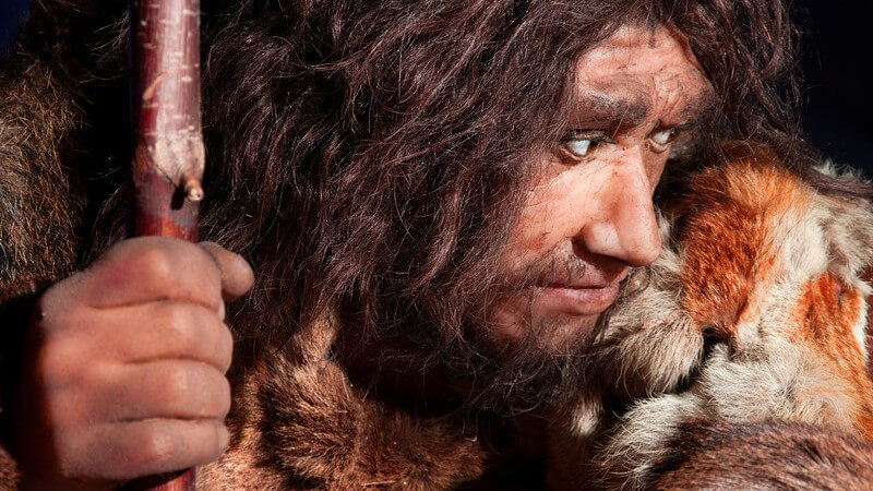 Neandertaler mit Tierfell und Stock