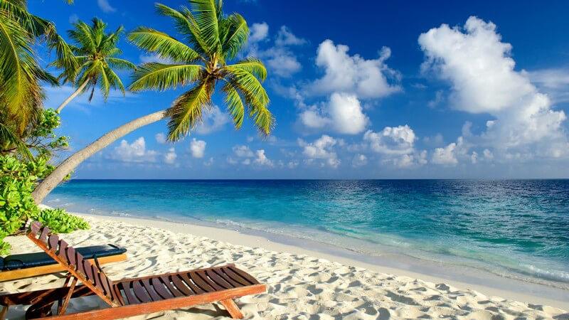 Traumstrand mit feinem Sand, türkisem Wasser, Palmen und Holzliege