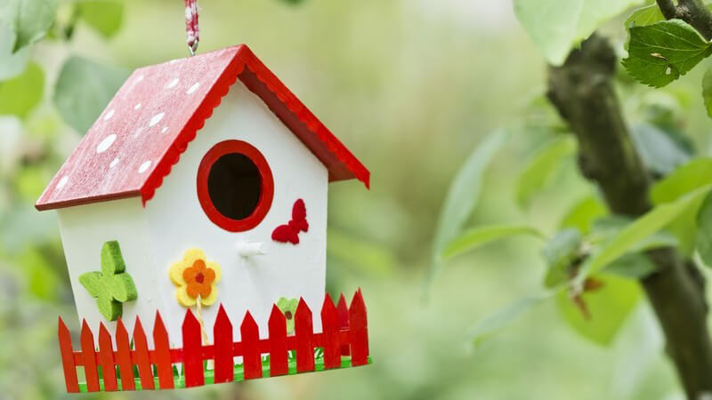 Rot-weißes Vogelhäuschen hängt an einem Baum