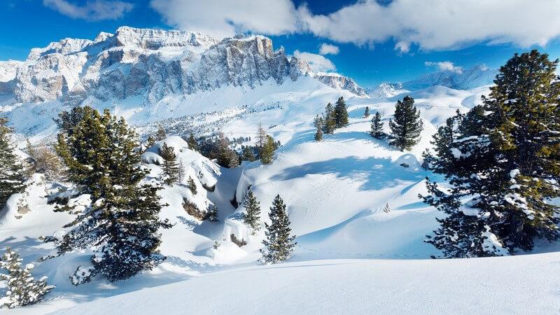 Winterlandschaft mit Schnee, Tannen und Bergen