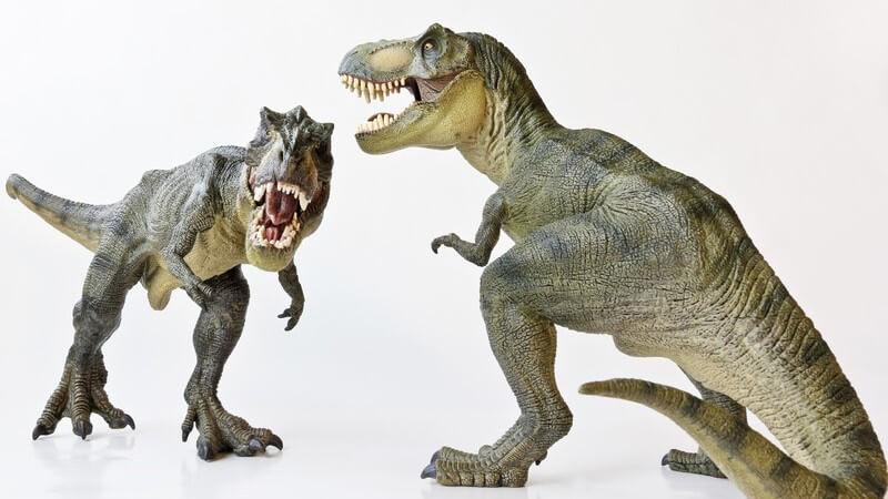 Dinosaurier, Modelle von Tyrannosaurus