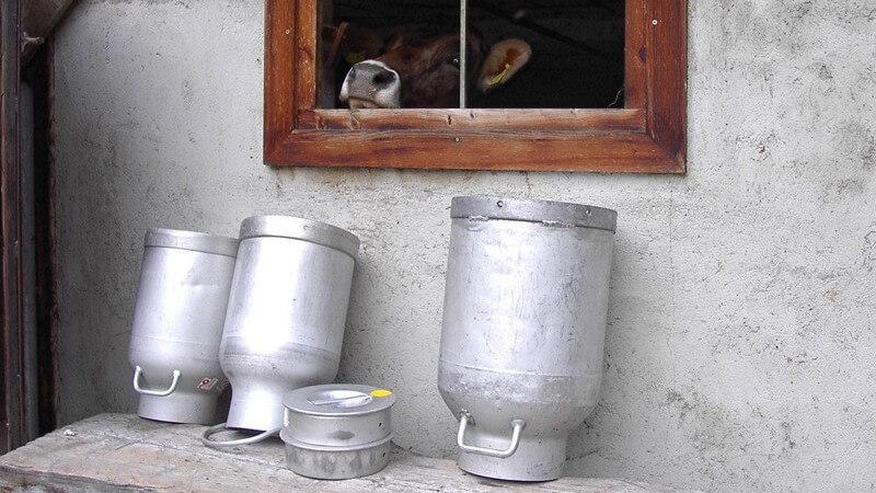Leere Milchkannen auf einer Bank vor einem Kuhstall