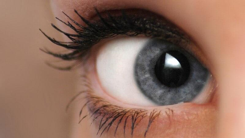Nahaufnahme rechtes Auge einer Frau, blaue Augenfarbe, mit Mascara geschminkt