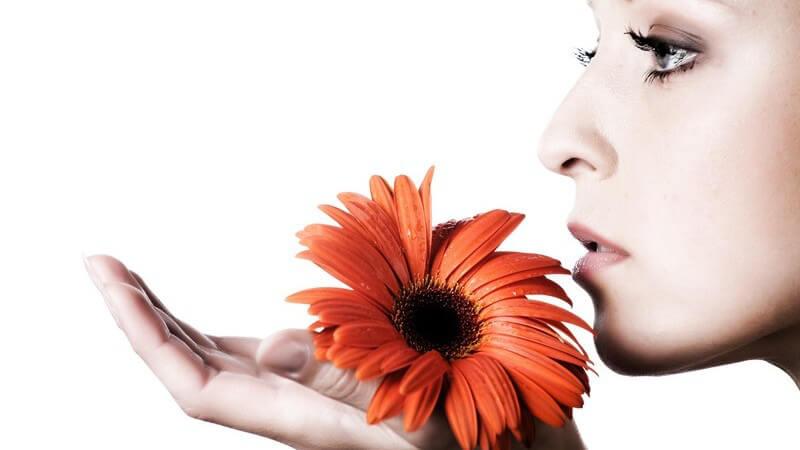 Seitenansicht junge Frau hält Blüte in der Hand und riecht daran
