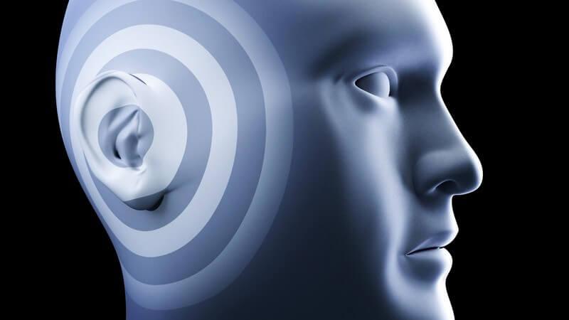 Grafik menschlicher Kopf, Betonung auf Ohr
