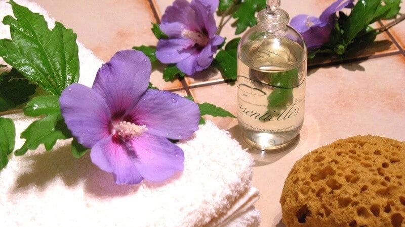 Bad - Lila Blüte auf weißem Handtuch mit Schwamm und Badezusatz