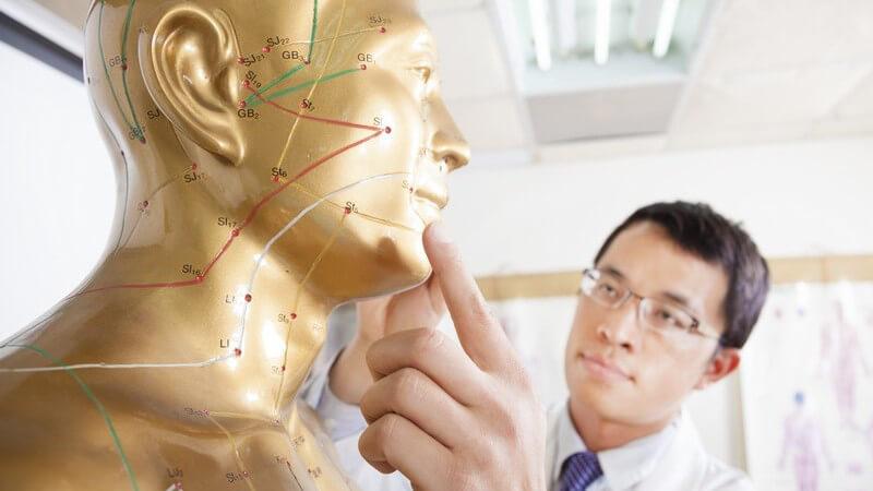 Akupunktur-Model, chinesischer Arzt berührt Akupunktkur-Punkt