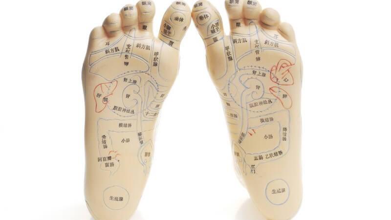 Modell menschlicher Füße mit eingezeichneten, farbigen Akupunkturpunkten und Beschriftung