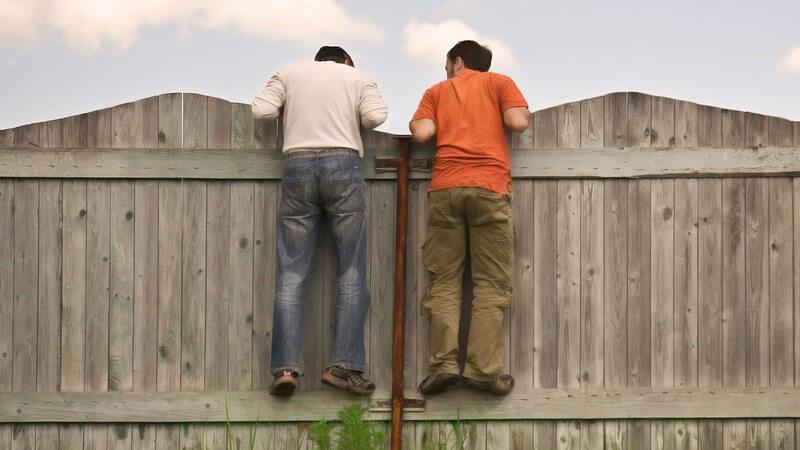 Rückansicht zwei Männer sind am Zaun hoch geklettert und schauen darüber