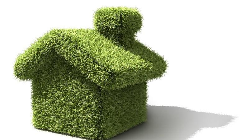 Grünes Haus-Modell aus Moos
