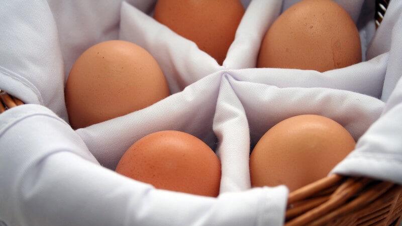 Körbchen mit 5 braunen Eiern