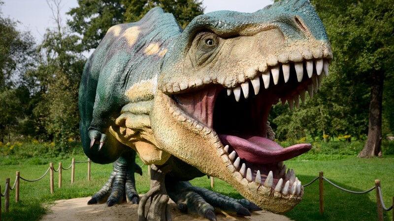 Modell eines lebensgroßen Dinosauriers (Tyranosaurus Rex)